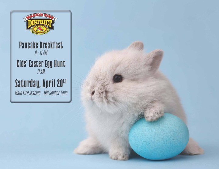 Image of baby bunny posed with an egg dyed light blue with text and Marion Fire District's logo.